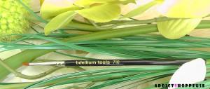 Bdellium Tools pinceau 710 iherb